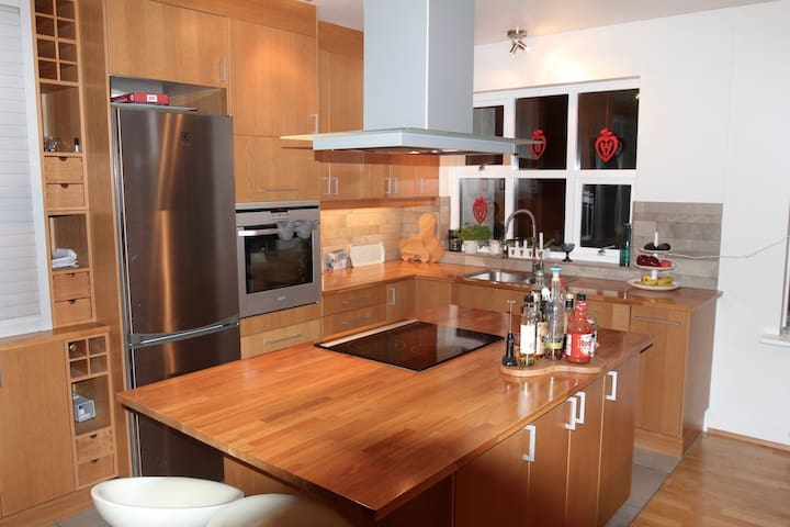 Spacious, bright and open 3 bedroom apartment - Reykjavík - Apartment