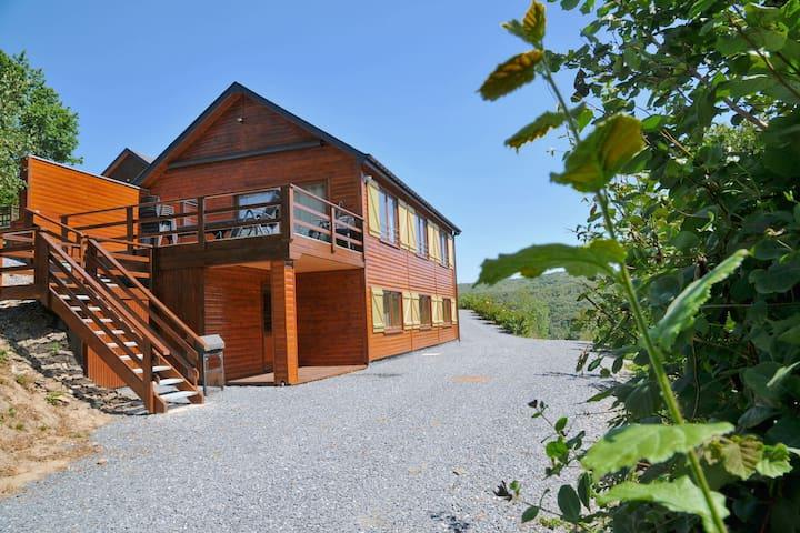 Cozy Holiday Home in La Roche-en-Ardenne with Terrace