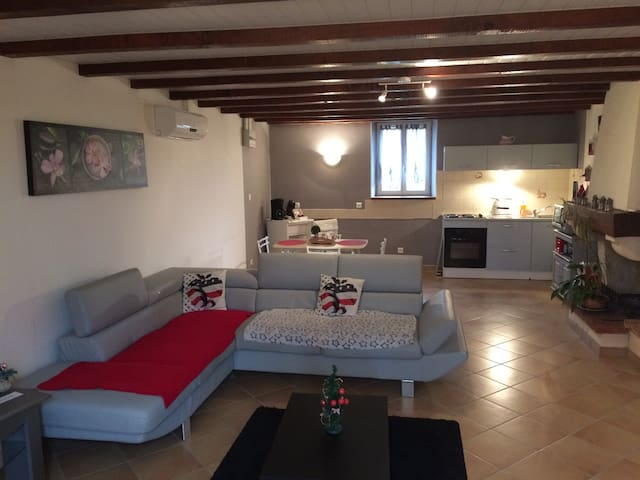 Appartement dans ferme Lauragaise - Montesquieu Lauragais