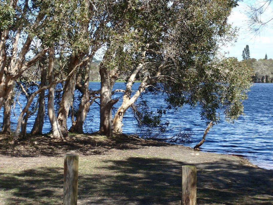 Lake Ainsworth.Picnic in shade and swim in fresh water.