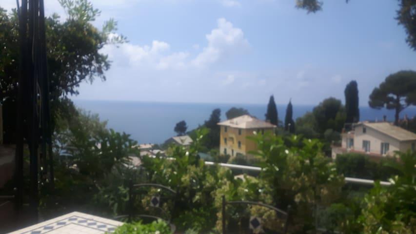 villa in italian riviera