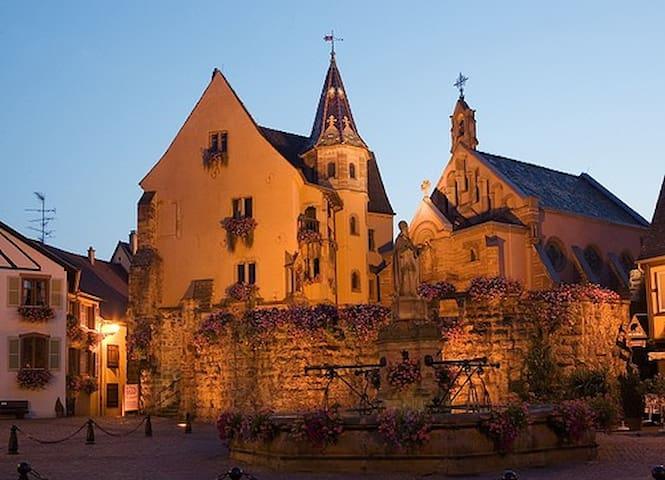 Spacieux gîte à Eguisheim - Eguisheim - Dům