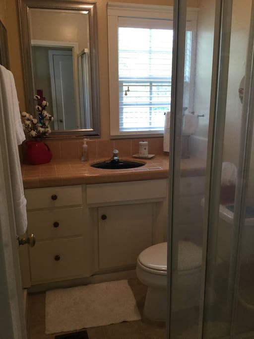 This is your private bathroom with a corner pocket shower.