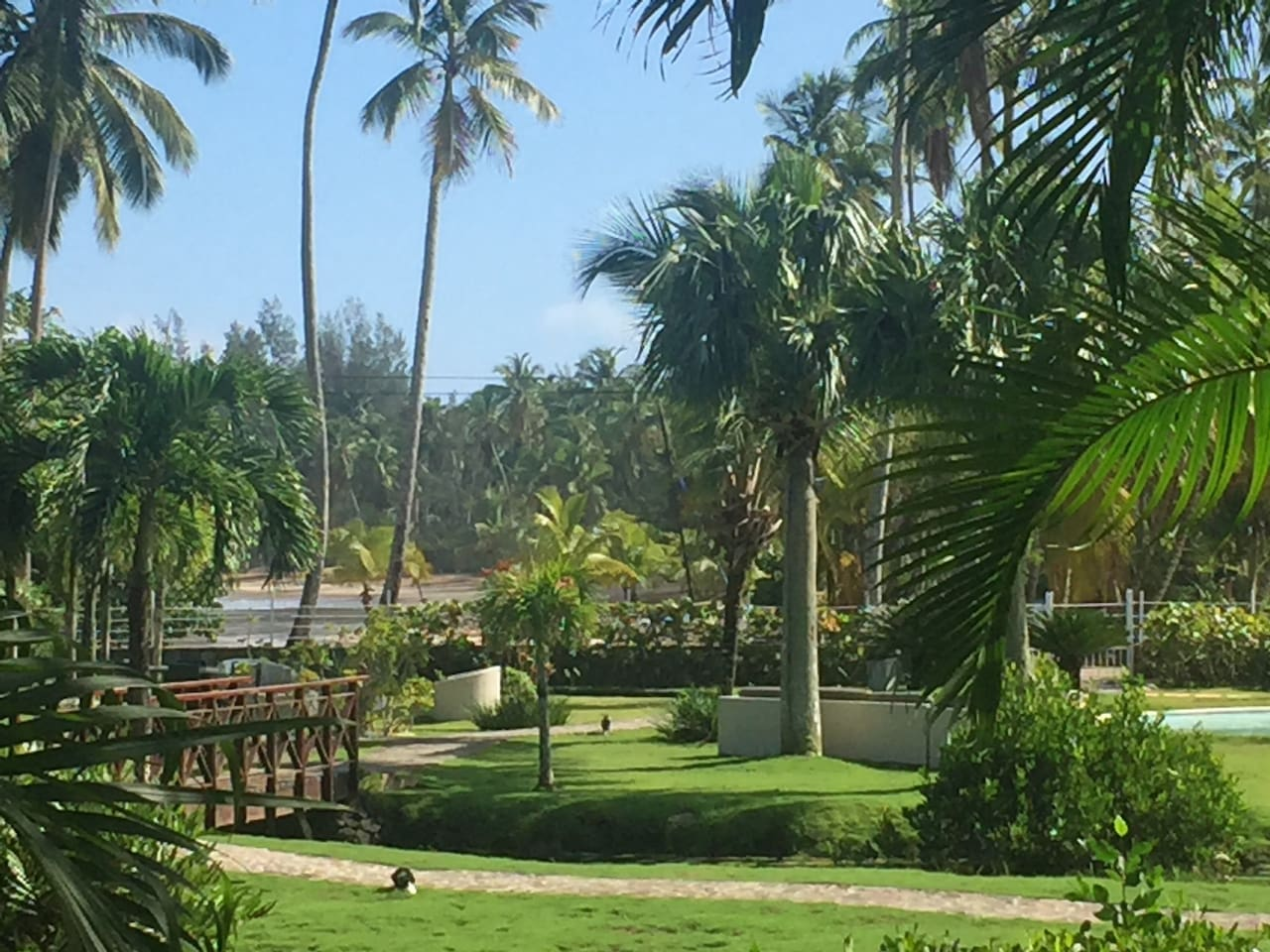 View of Beach, pool and grounds from the private covered lounging area of residence