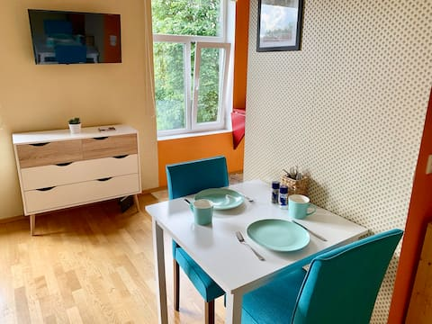 Cozy and sunny apartment in historic Pelgulinn
