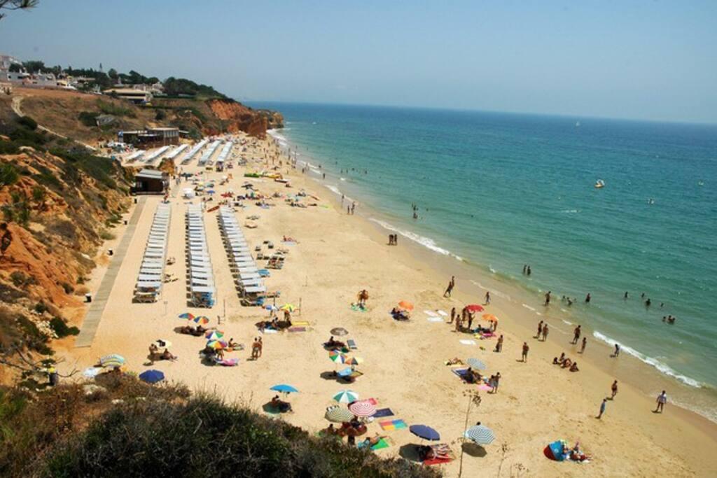 Maria Luisa Beach - 500 m