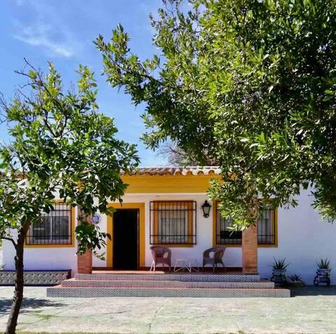 La Casa de la PalmeraCasa rural chalet con encanto