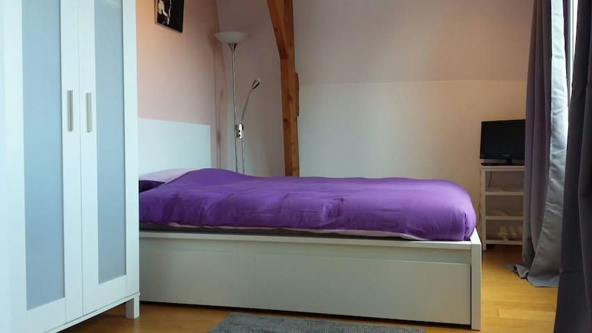 Big room, guest bathroom, in citycentre Gouda 2