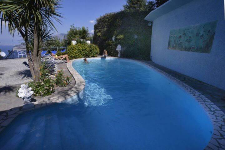 V443 - Sea view & private pool - Sorrento - Villa