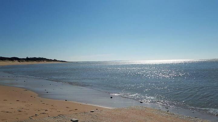 La Rémigeasse, 100m de la plage