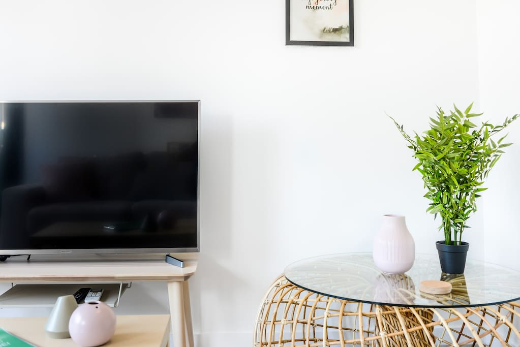 Large Smart TV with Youtube and Netflix
