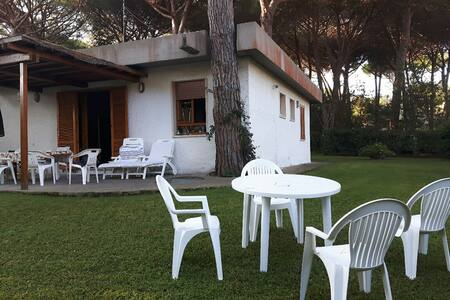 villetta in pineta - Punta Ala - House