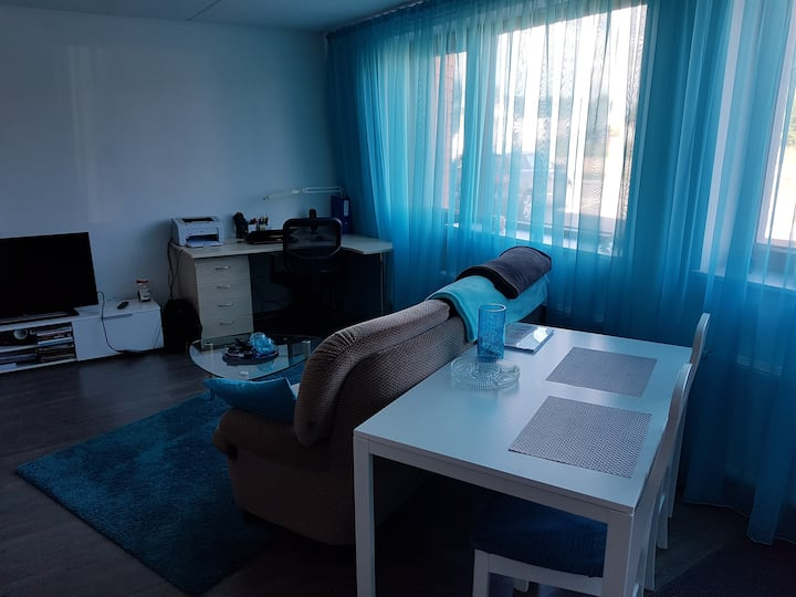 3 people apartment for metallica