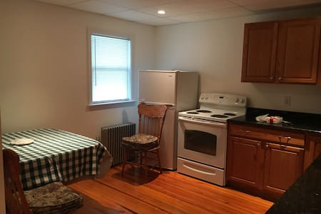 Charming allergy free apartment - BARRINGTON