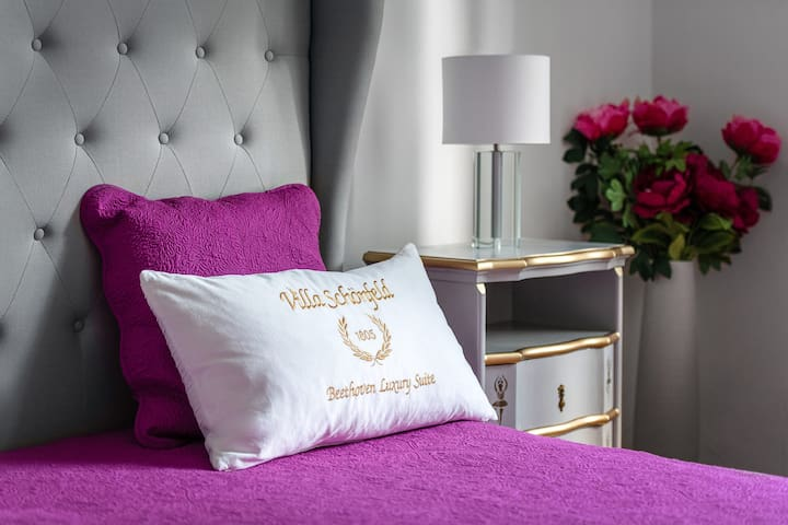 Villa Schönfeld (Baden bei Wien), Beethoven Luxury Suite Apartment mit Balkon: Wohntraum auf 140qm