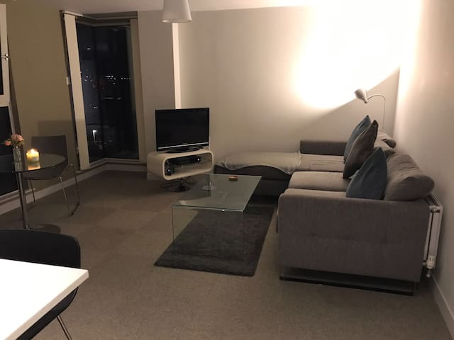 Double room in luxury city apartment