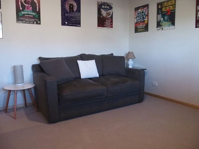Sitting room with pull out sofa