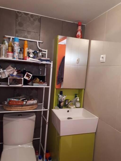 salle de bain fonctionnelle avec WC et douche