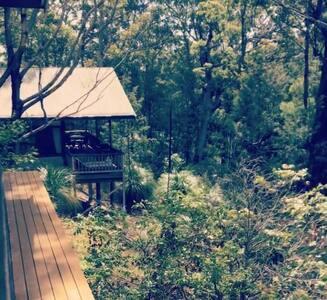 Tallow Wood Pavilion - Arakoon - Haus