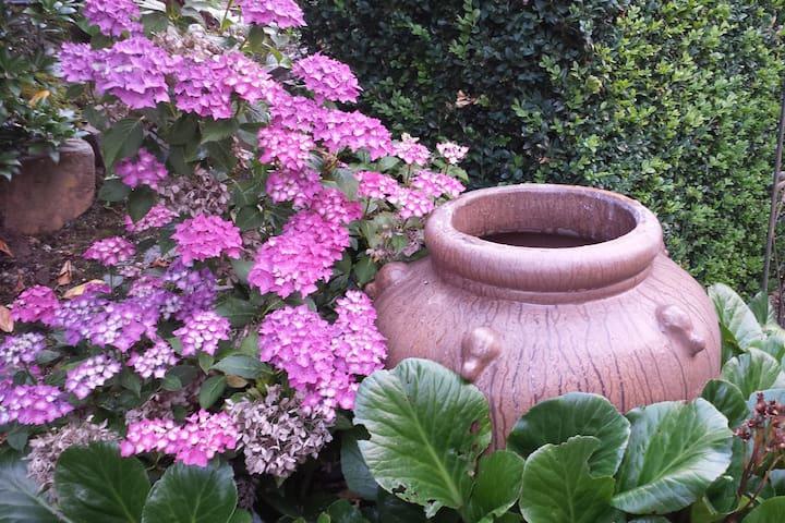 Garden View 97222