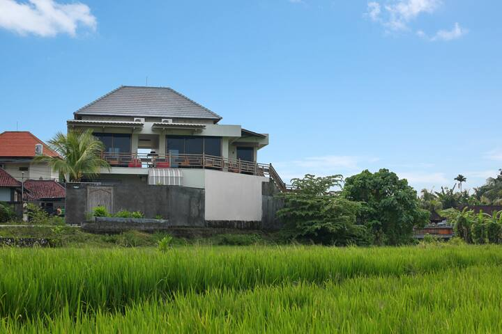 Apartment 1 in the rice paddies