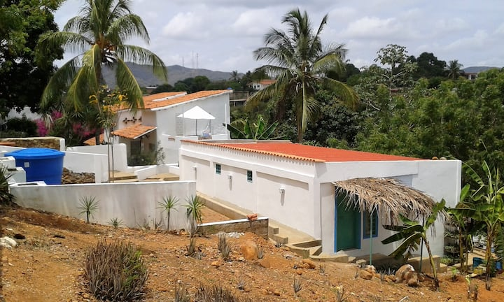 Spectacular annex at the Caribbean
