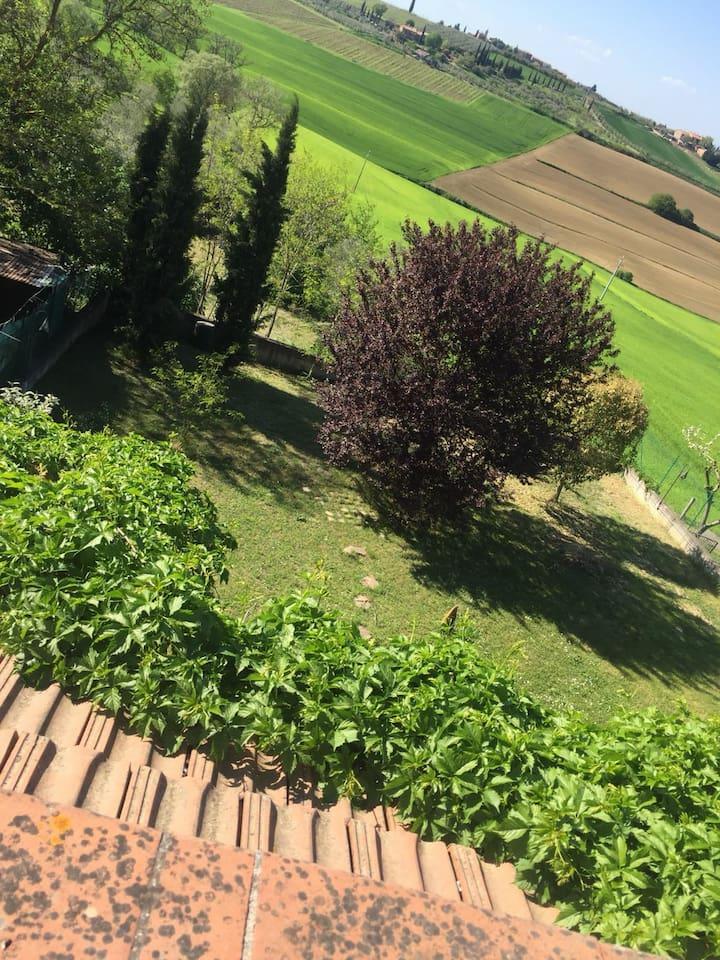 View. vineyard 1km away