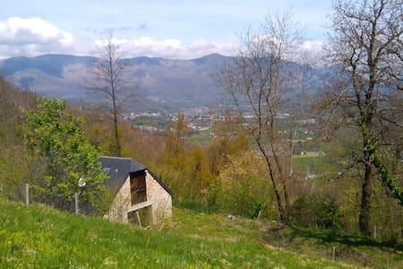 Maysoe Grange rénovée - Saint-Savin