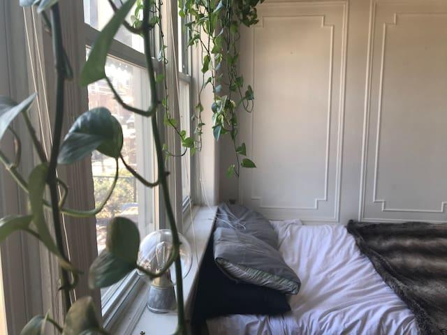 Charming sunlit 1 bedroom apartment in Astoria