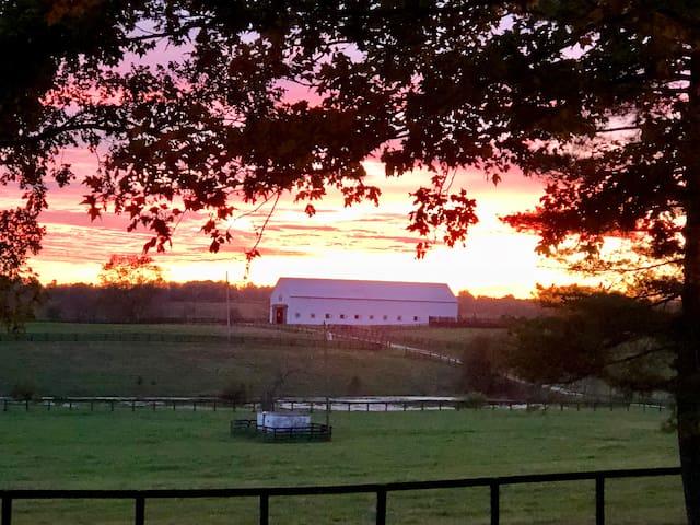 Lexington Horse Farm Cottage Bluegrass Country.