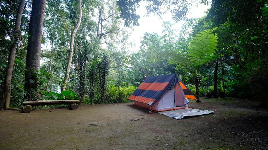 Serene Camping at Lonely Planet Hometay