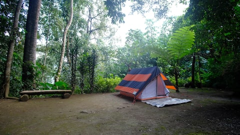 Serene Camping at Lonely Planet Homestay Kalimpong