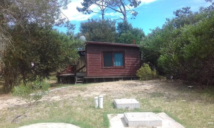 Cabaña ideal para relajarse en un entorno natural.