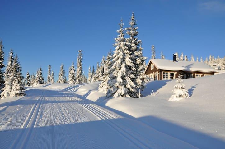 Nyoppført hytte på Sjusjøen - Sjusjøen