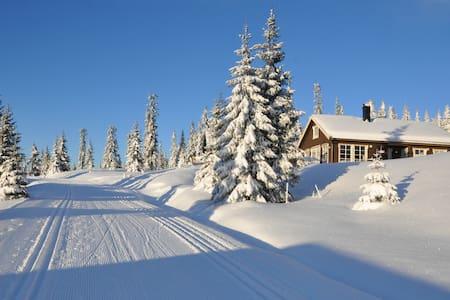 Moderne hytte på Sjusjøen, like ved skiløypen