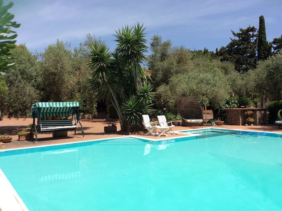 Villa mediterranea camera 3 ville in affitto a oristano - Piscina oristano ...