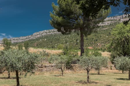 Charming F3 surrounded by vines and olive trees