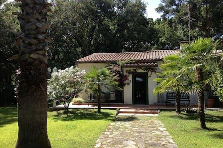 Sabaudia -Baia D'Argento Villetta - Sabaudia - Huvila
