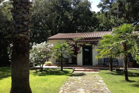 Sabaudia -Baia D'Argento Villetta - Sabaudia - 別荘