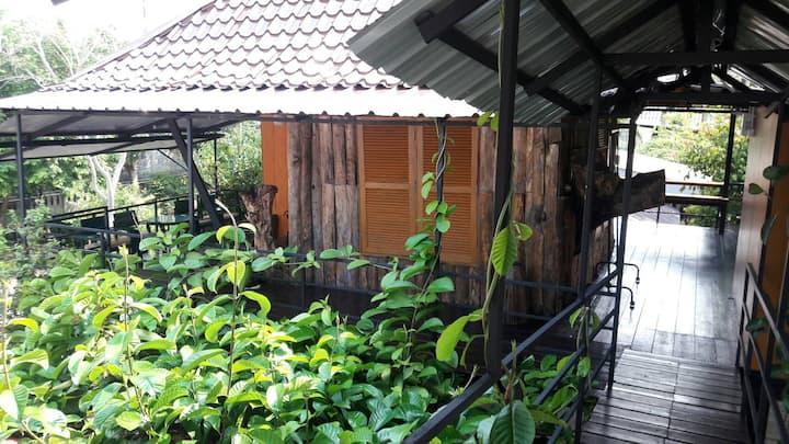 Casa Bonita (Tree house)