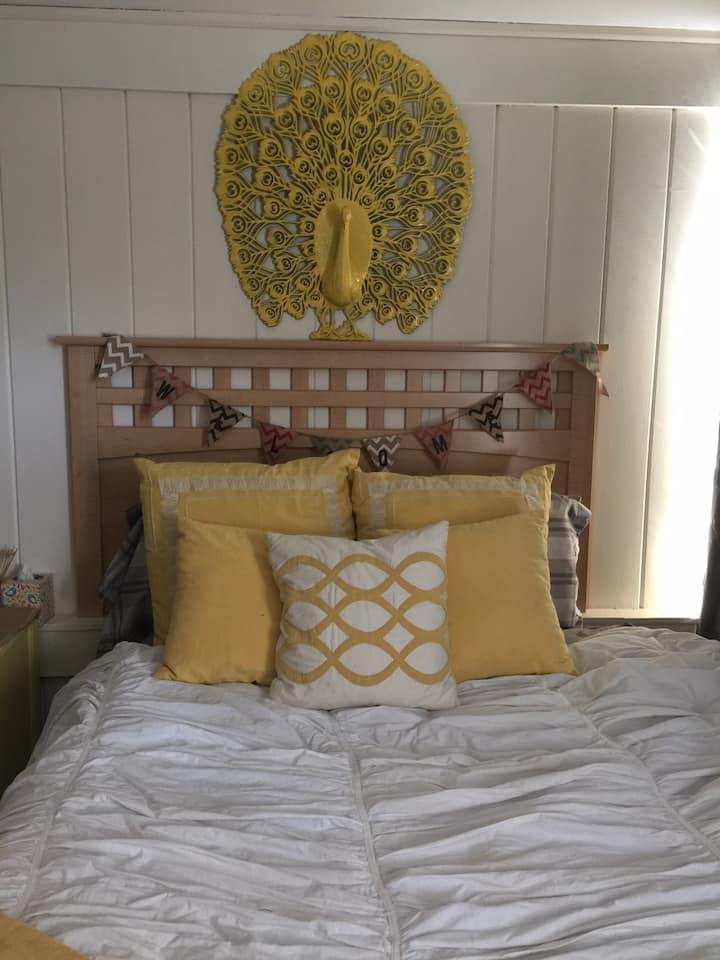 Winter Park Private Bedroom near Rollins & Park Av