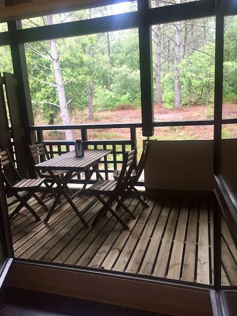 Duplex 3/4 personnes vue forêt à 200m du lac