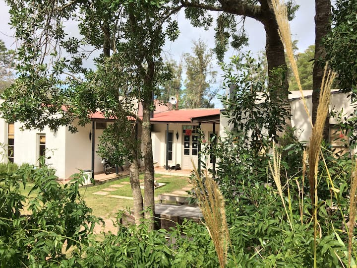Hostel en Punta Ballena