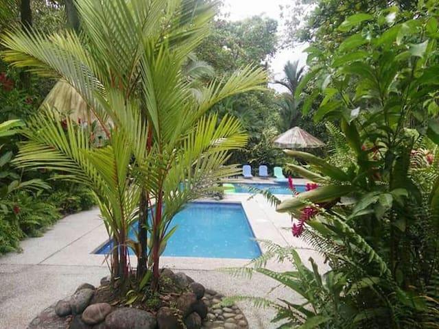 cabañas rusticas piscinas  jacuzzi - Sarapiquí - Nature lodge