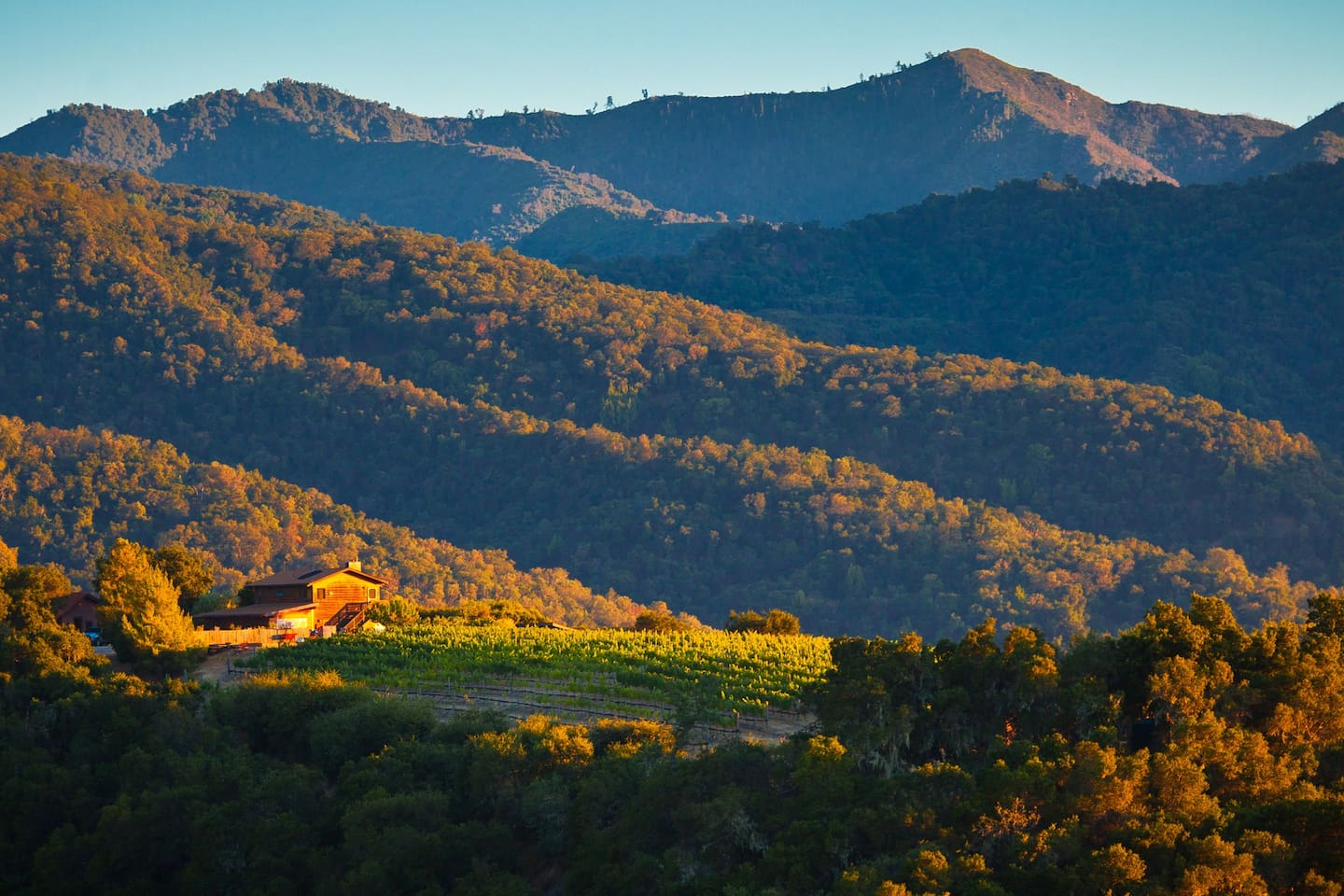 Your Vineyard Cottage amongst the Carmel Valley Mountains and Vines!