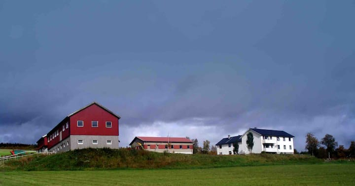 Leilighet på Svengård, Nerskogen.