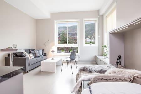 Studioleilighet i sentrum av Drammen - Drammen