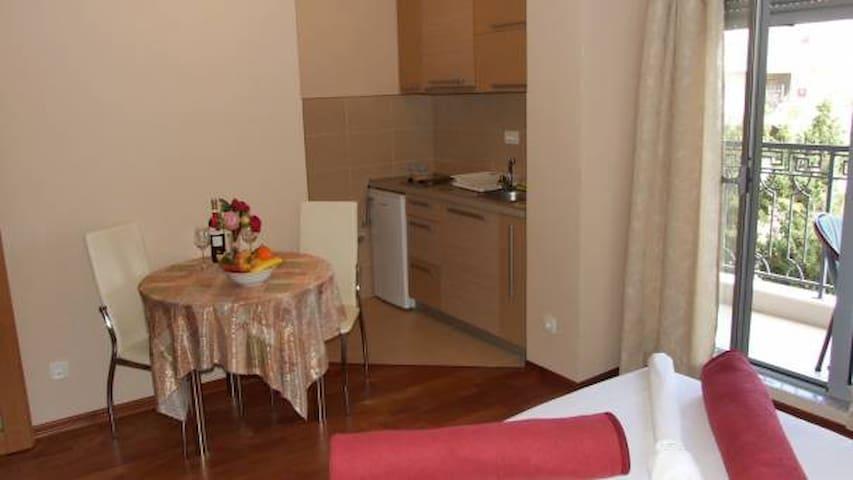 Apartments Oaza 2-Studio 1/2+1 nr.3