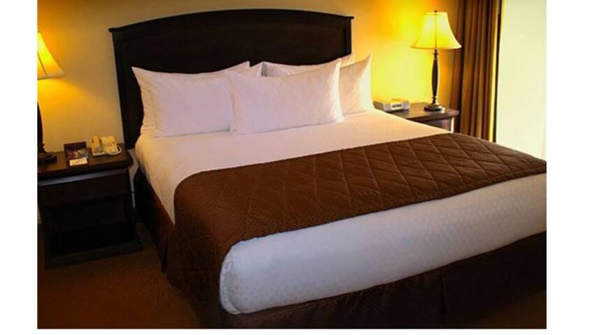 1 bedroom in Las Vegas strip