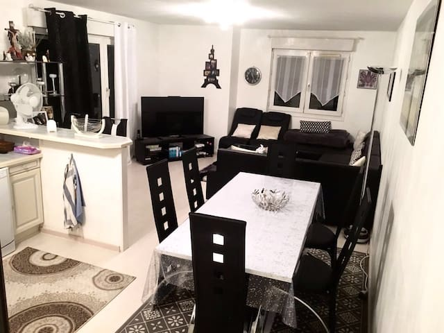 LOVELY BIG APARTMENT NEAR GENEVA AND SKI - Etrembières